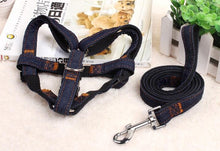 Puppy Dog Harnesses Lead Set Cowboy Traction Rope Strong Leash Dog Collar Teddy Pet Training Supplies Large Dogs Harnesses - lovethepup