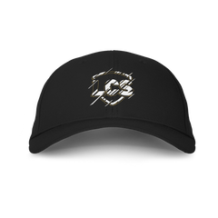 LCS Shattered Dad Hat