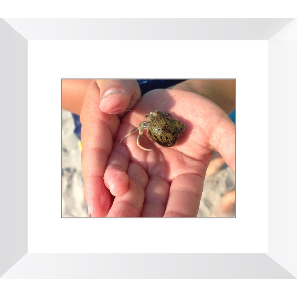 Meghan Nathanson Artistry color photo of child's hands holding a small crab coming out of its shell framed print