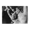 Meghan Nathanson Artistry black and white photo of a child's hands holding a worm on folded greeting card