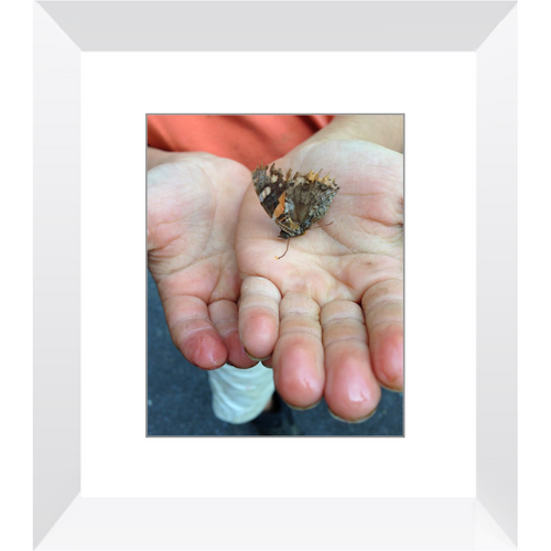 Meghan Nathanson Artistry color photo of child's hands holding a butterlfy 8x10 framed print