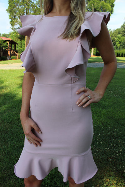 Jillian Dusty Rose Bodycon Dress by Cashmere and Company