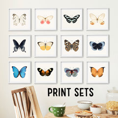 Save on Print Sets