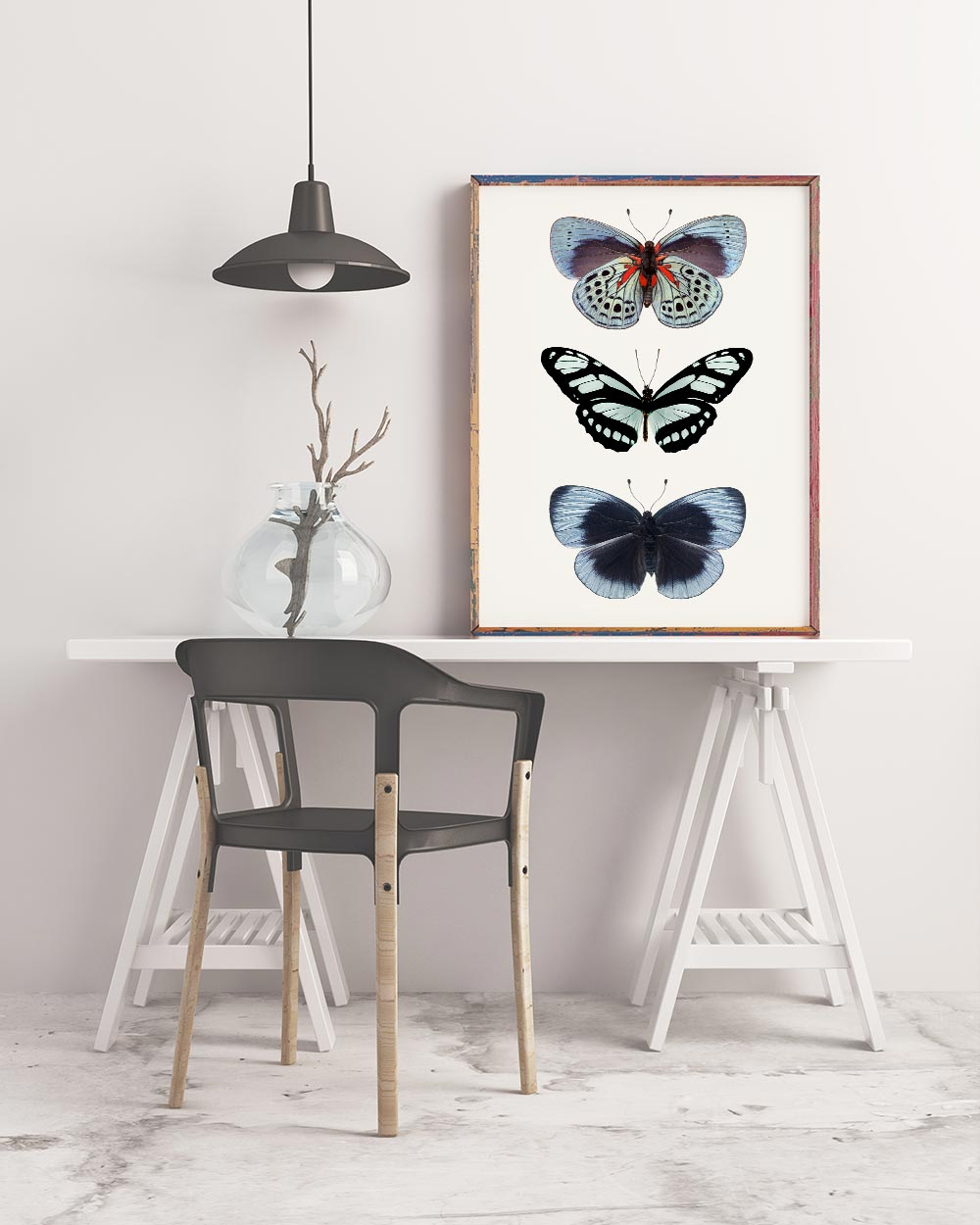 Framed Print of Blue Butterflies