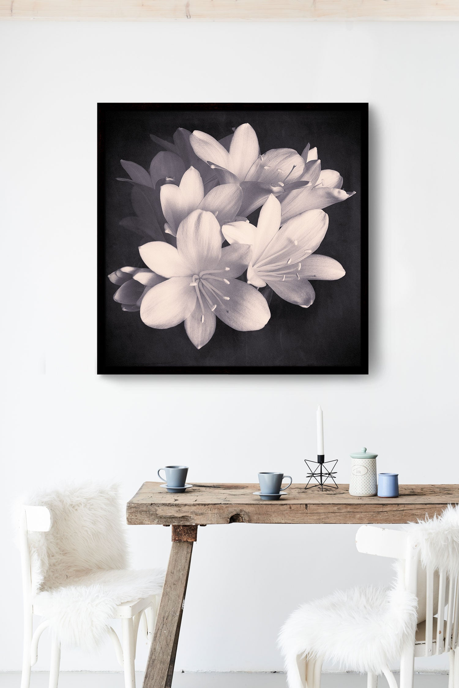 "Black and White Flower Photography Print ""Clivia No. 2"""