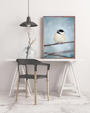 "Fine Art Bird Photography Print ""Chickadee in Snow No. 17"""