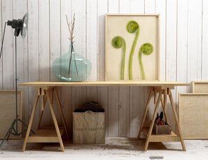"Fern Art, Botanical Print ""Baby Ferns Unfurling No. 3"""