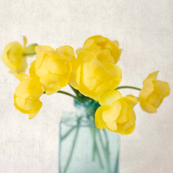 "Set of 6 Prints, Gallery Wall Art Set ""Green & Yellow Flowers"""