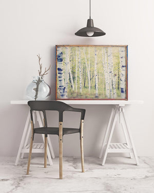Sample framed print of Birch Trees in Spring