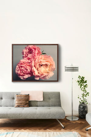 "Fine Art Flower Photography Print ""Coral Peonies No. 53"""