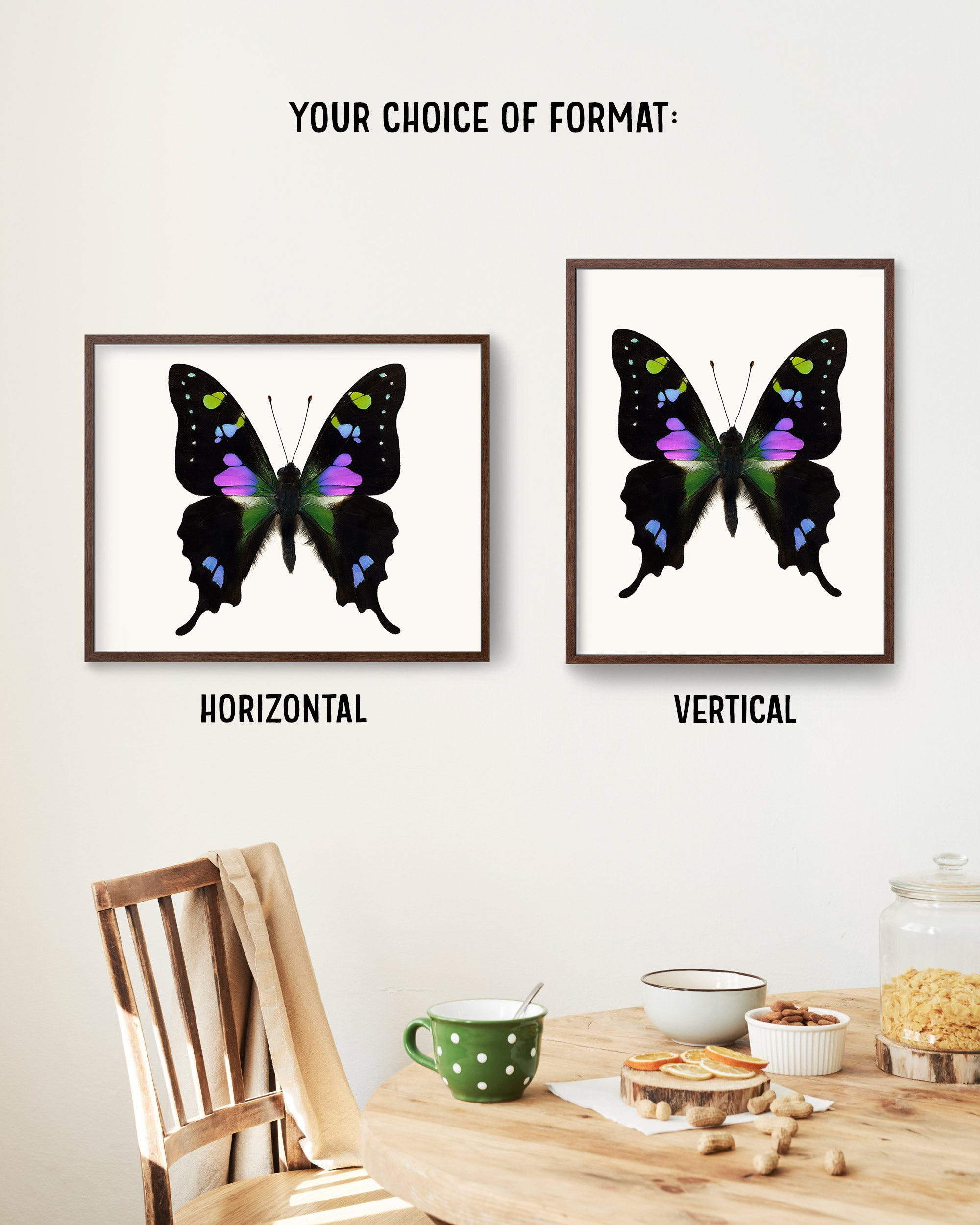 Butterfly Photo No. 10 - Graphium Weiskei - Purple Spotted Swallowtail Butterfly Print