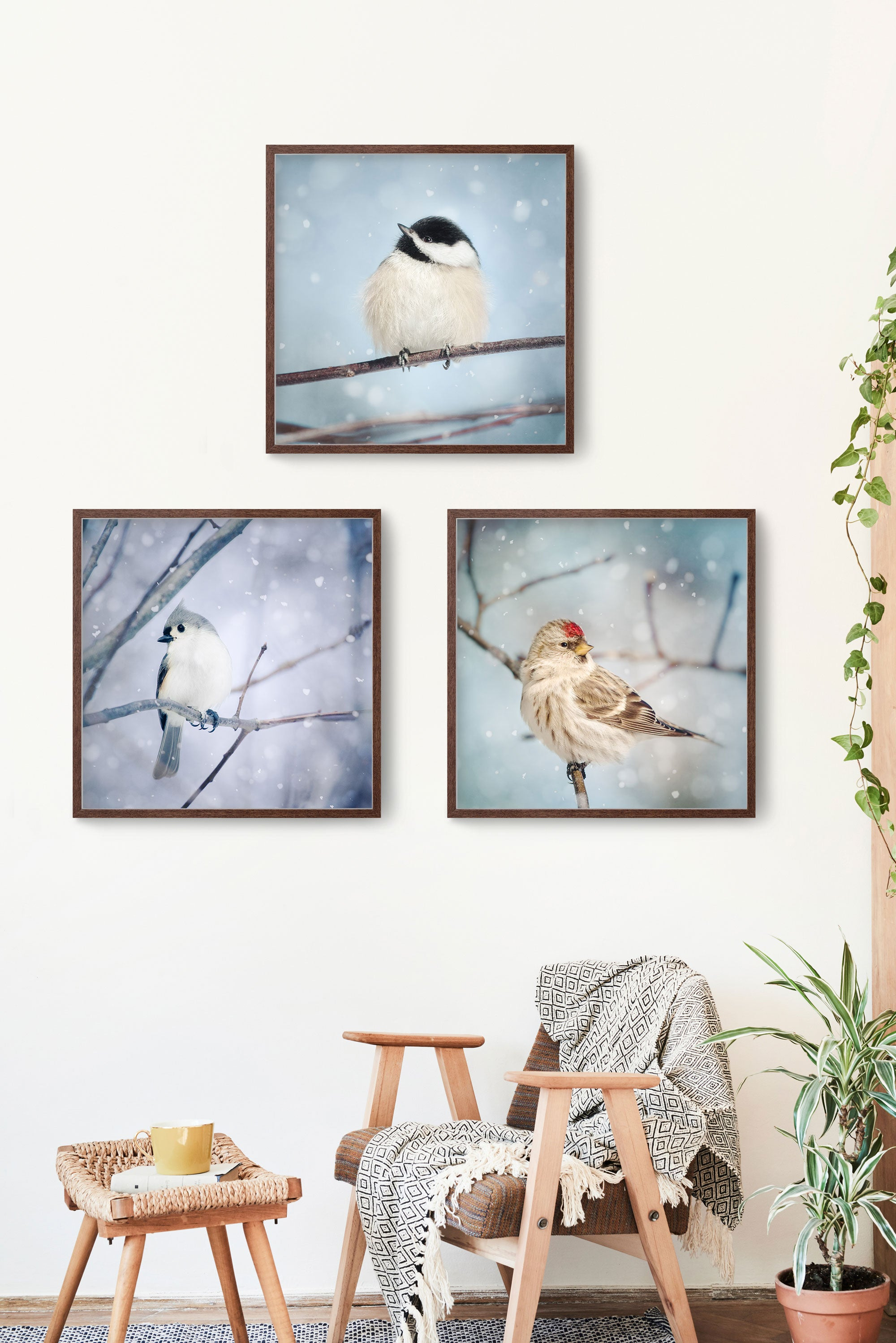 set of 3 birds in snow prints