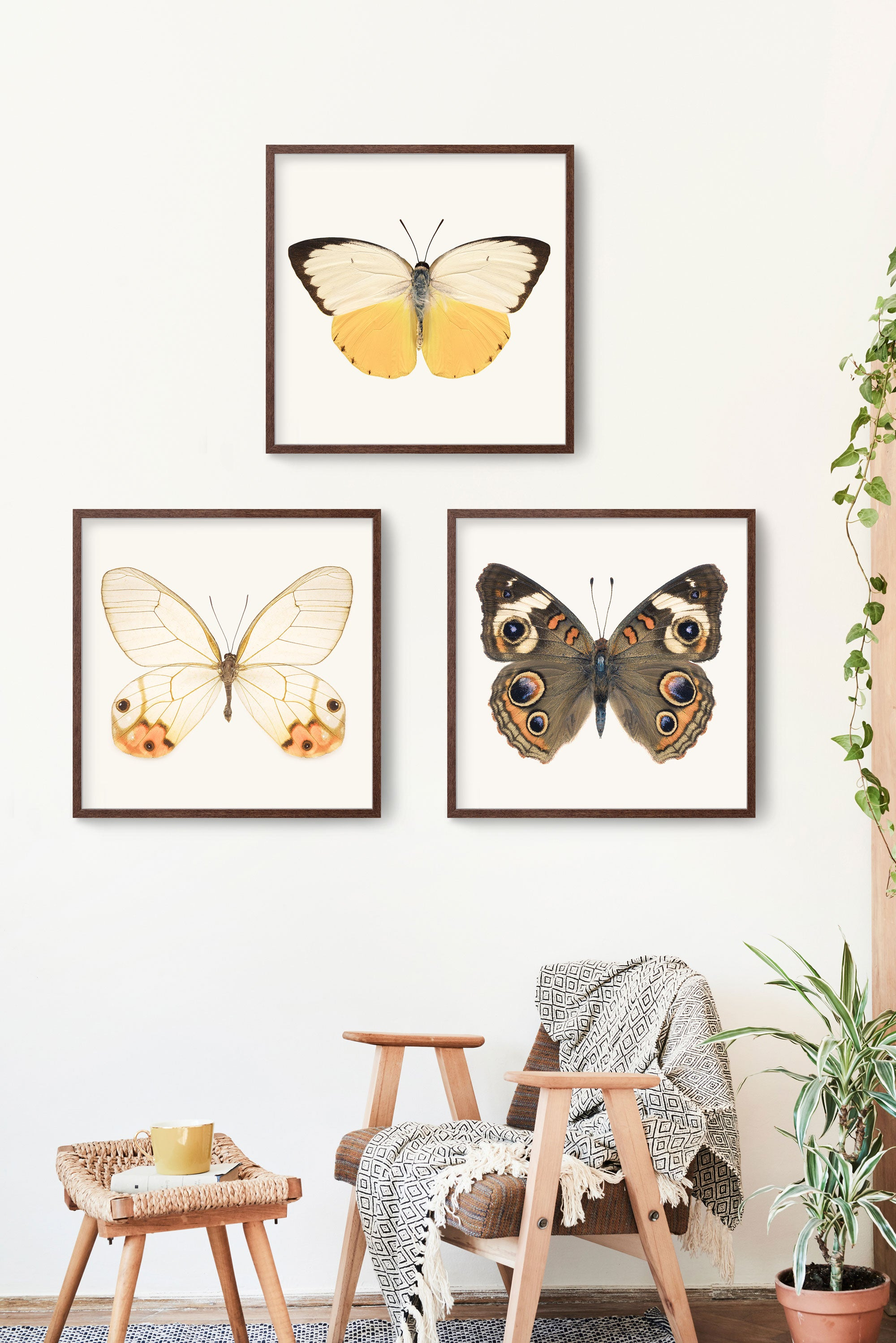 Set of 3 butterfly prints