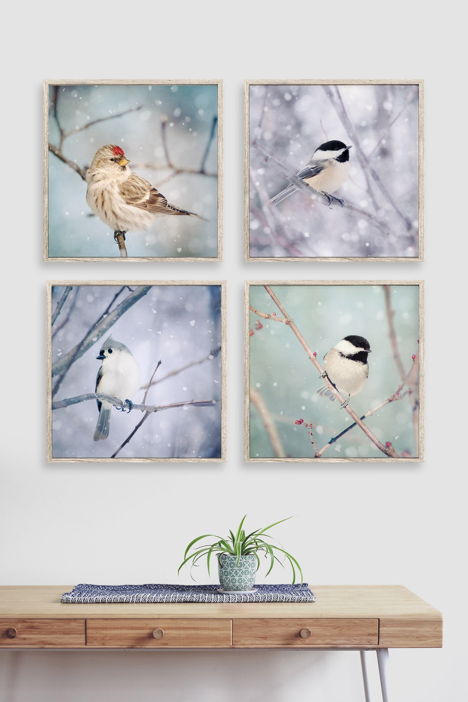 Set of 4 photography prints of birds in snow