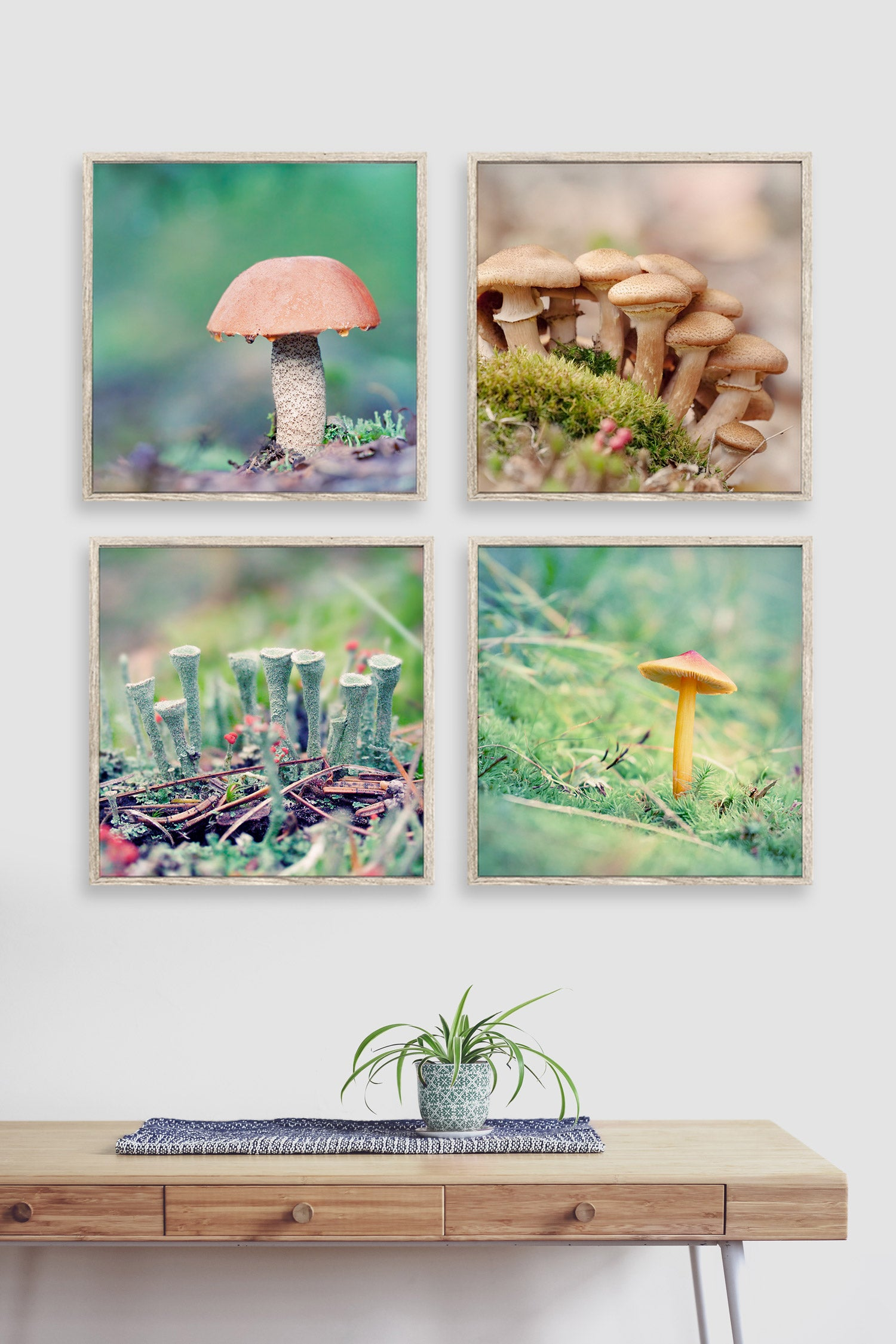 set of 4 woodland photography prints of the forest floor