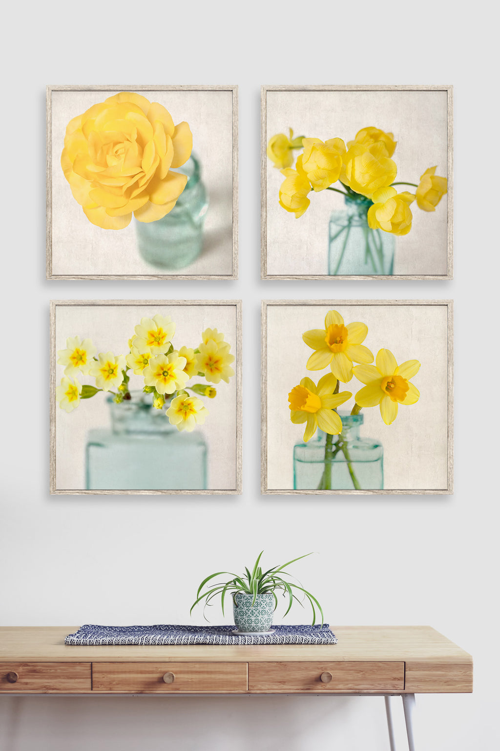 Set of 4 yellow flower photographs