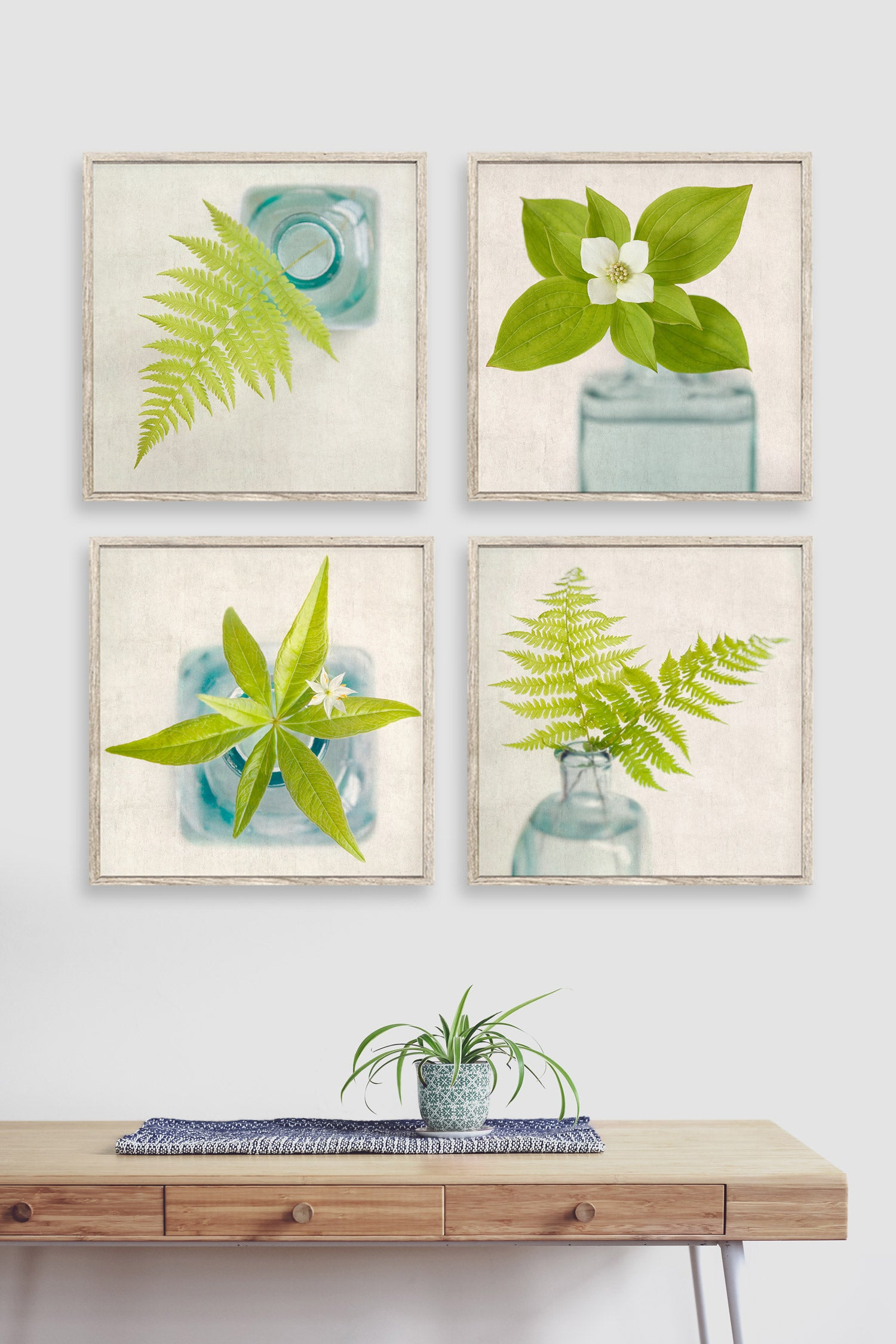 Set of 4 modern botanical photography prints