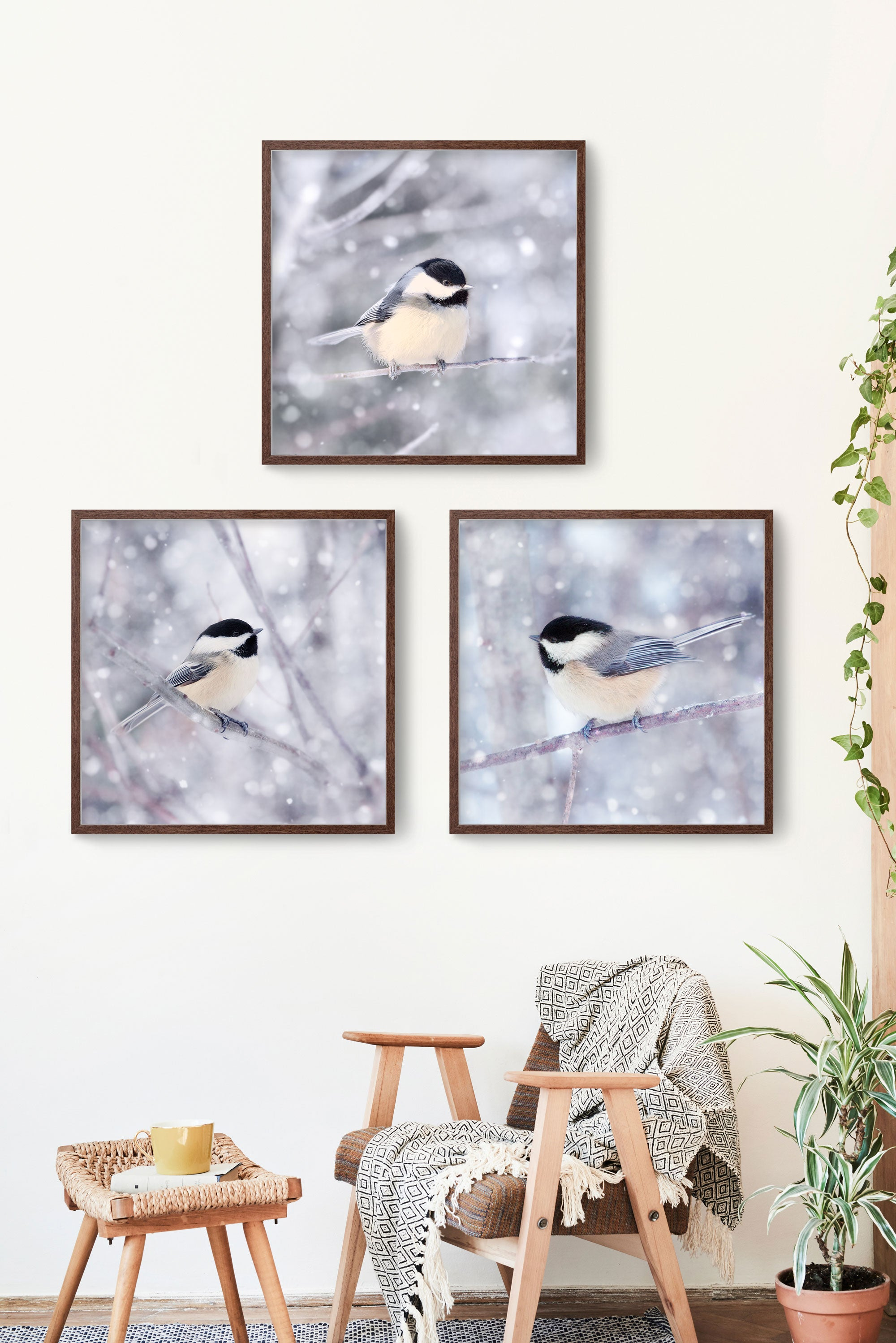 set of 3 prints of chickadees in snow