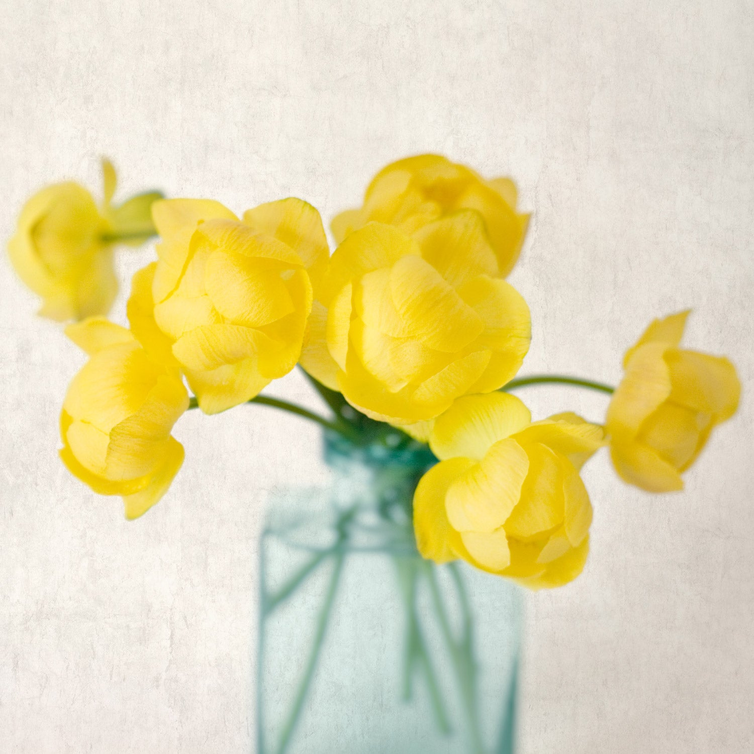 "Set of 4 Prints, Floral Wall Art Set ""Yellow Flowers"""