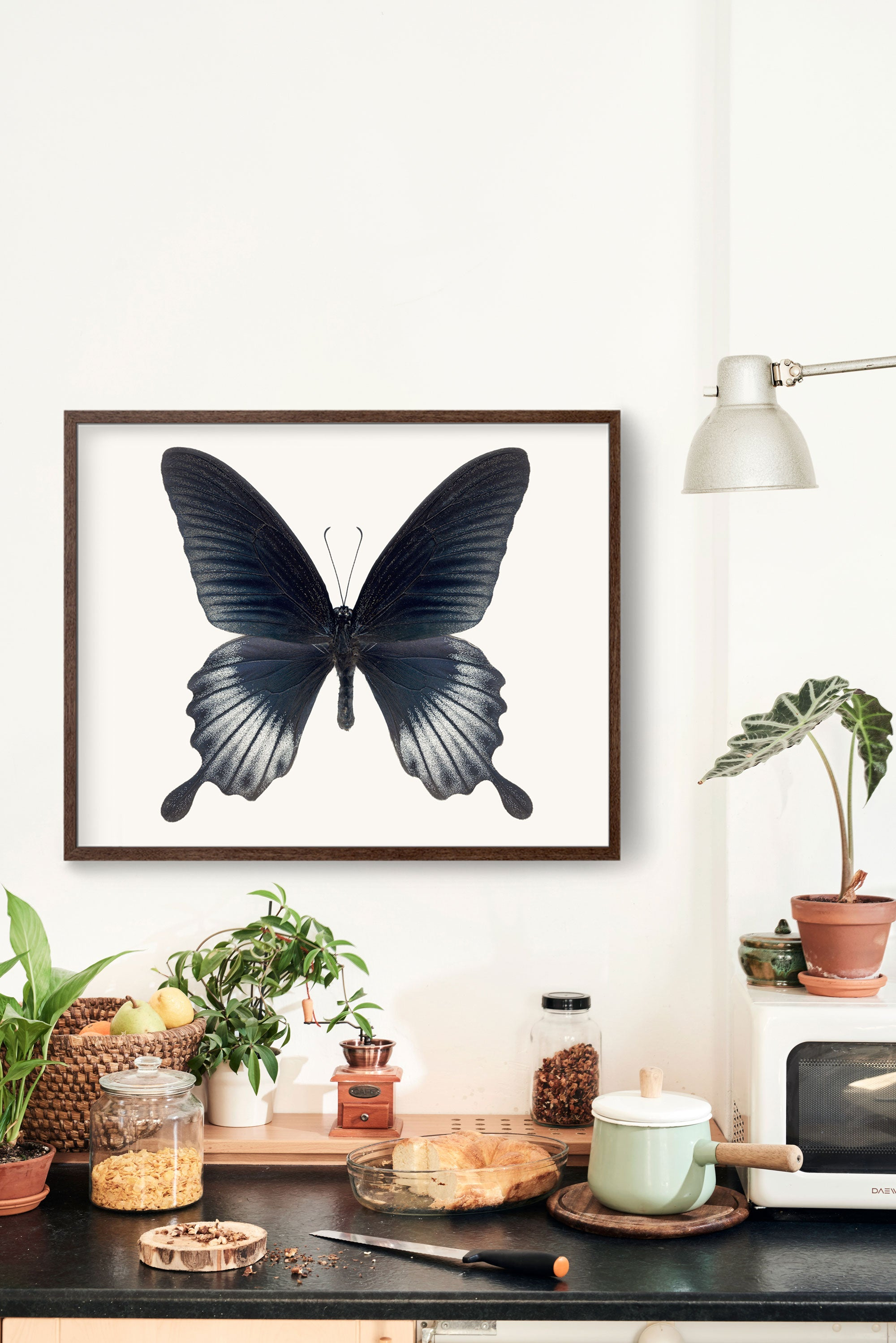 Butterfly No. 4 - the Asian Swallowtail Butterfly