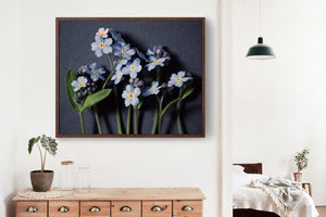 "Fine Art Flower Photography Print ""Forget Me Not No. 13"""