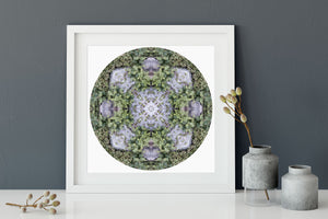 Nature Mandala Art Print No. 789