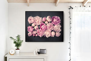 "Fine Art Flower Photography Print ""Peony No. 41"""