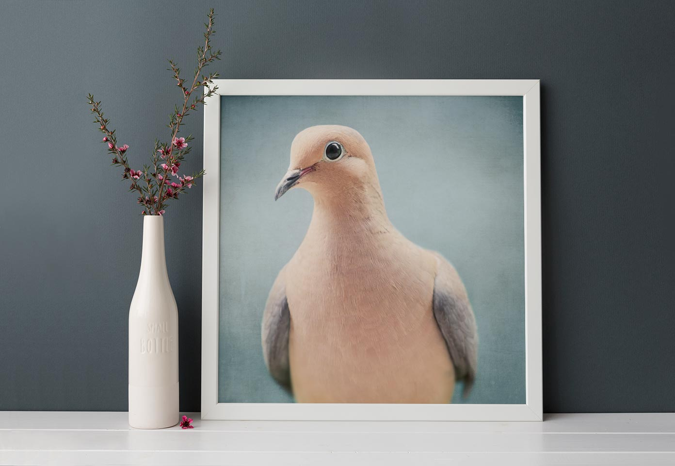 "Bird Portrait, Fine Art Bird Photography Print ""Mourning Dove No. 5"""