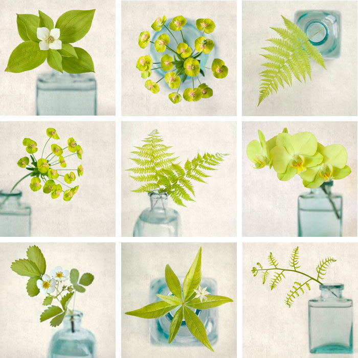 Floral Wall Art Set of 9 Prints, Green Flowers and Ferns