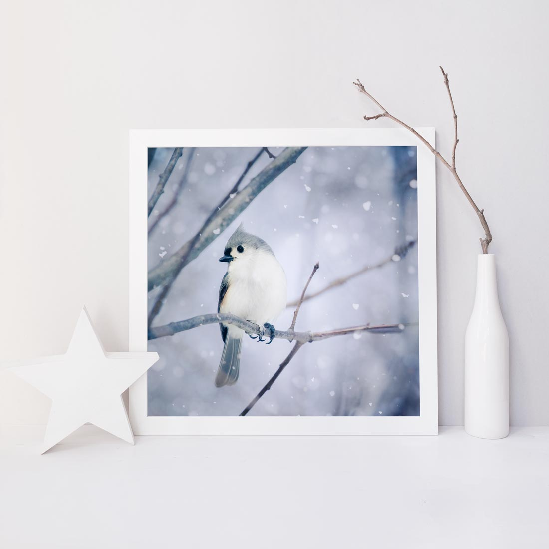 "Fine Art Bird Photography Print ""Tufted Titmouse in Snow No. 9"""