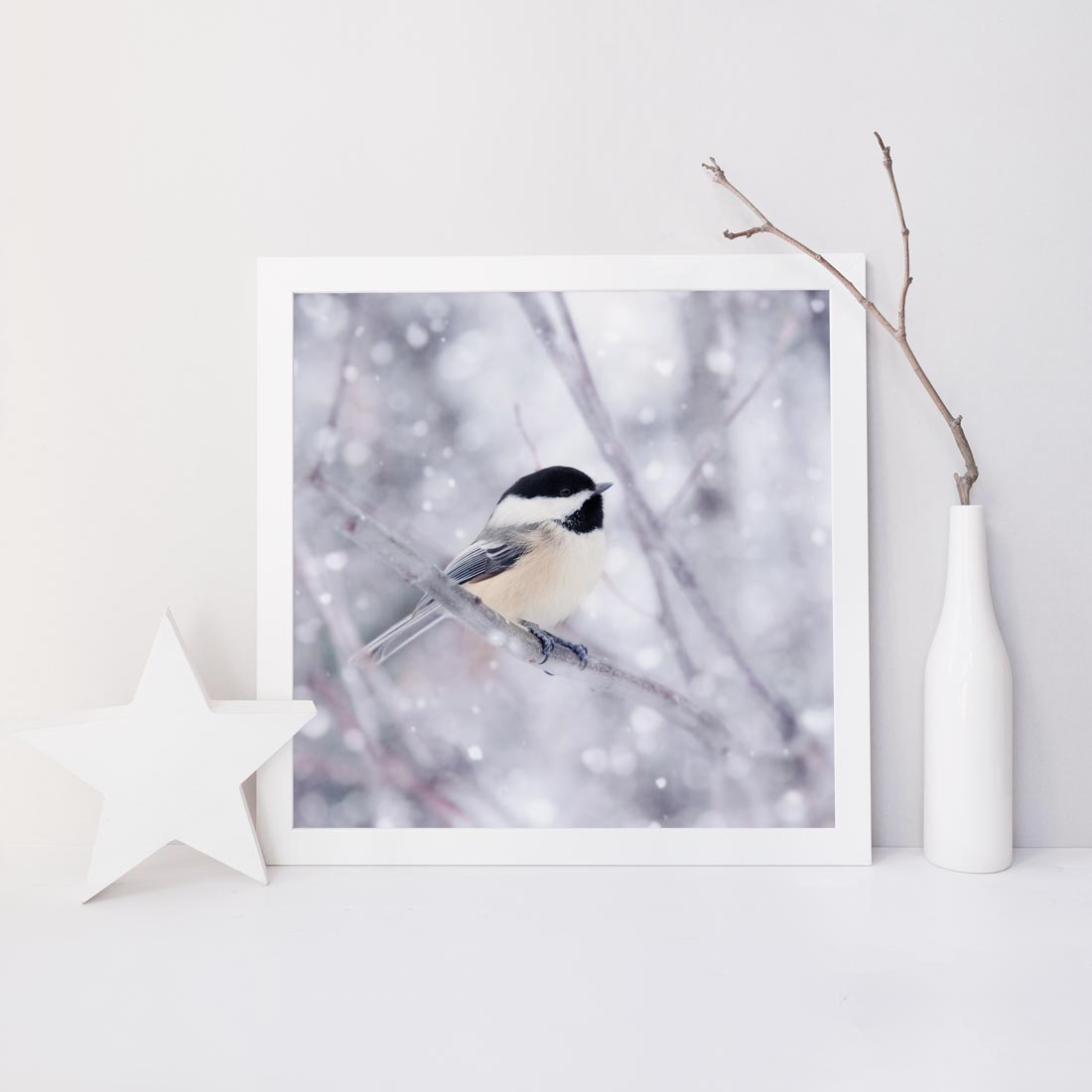 "Fine Art Bird Photography Print ""Chickadee in Snow No. 9"""