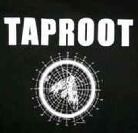 TAPROOT - Moth T-shirt ~Never Worn~ M