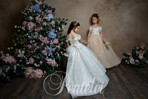 Exquisite Off Shoulder adorned Neck Ball Gown Girl Pentelei Dress 2302