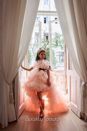 Birthday Girls Asymmetric Ruffled  Blush Pageant Dress Celestial 3101