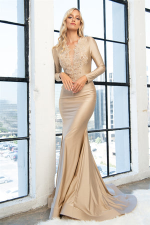 Affordable Long Sleeves Evening Gown