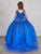 Glitter Ball Gown with Tail Royal Blue Tip Top 5804