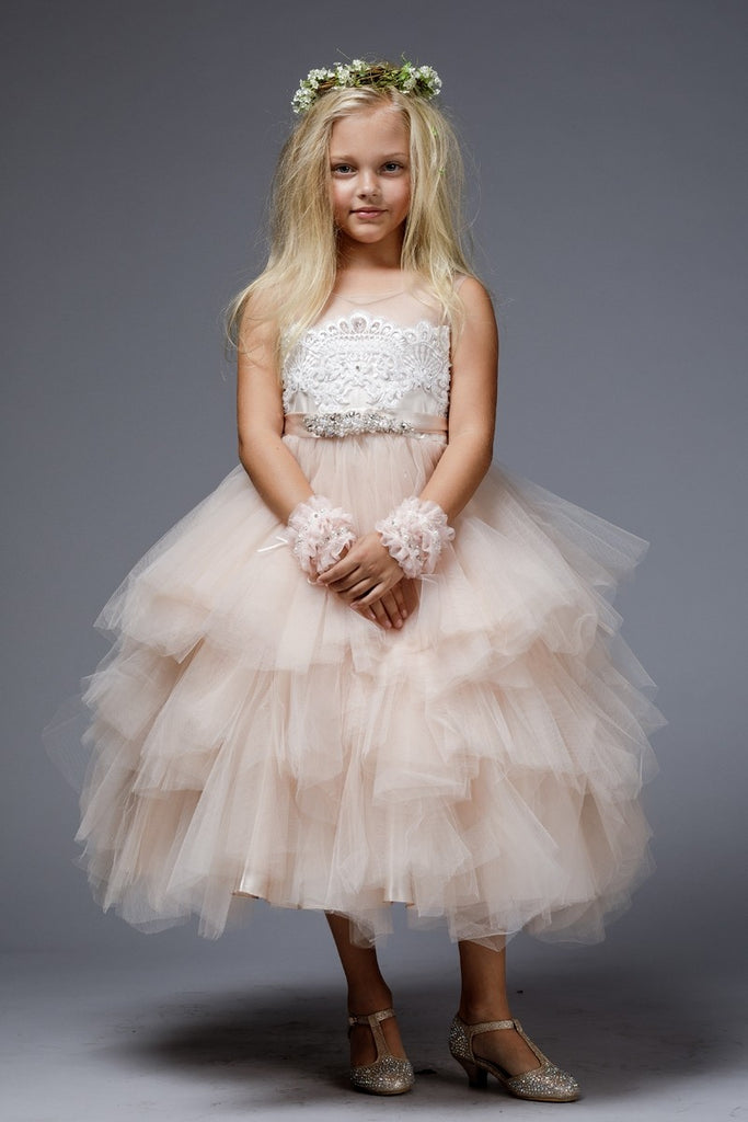 Fascinating Tulle Multi Tiered Skirt with Embroider applique dress