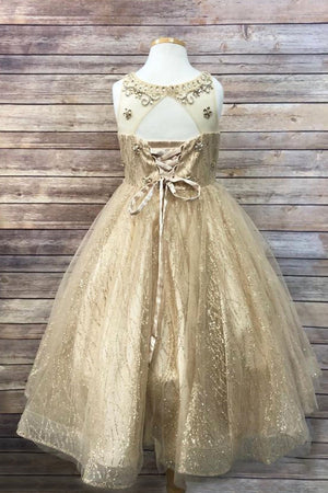 Sleeveless Glittery Sweetheart Champagne Flower Girl Christmas Dress C334