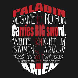 Paladin T Shirt from TeeRexTee