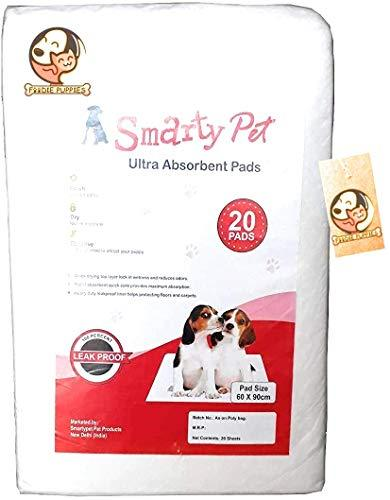 jacky treats pet pad Puppy Kitten Potty Pee Training Disposable - Amanpetshop-