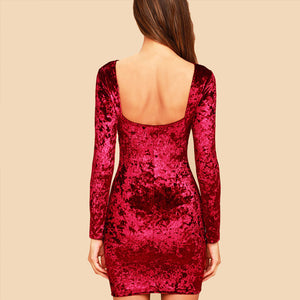 Crushed Velvet Bodycon Dress-Pretty Shining People