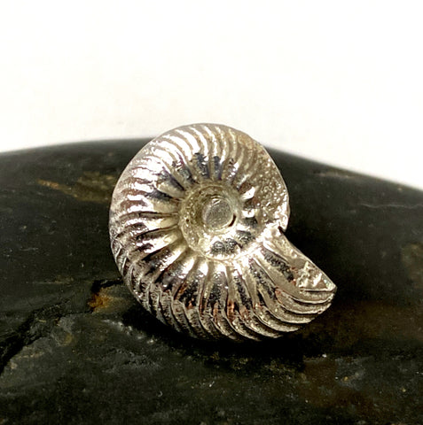 Sterling Silver Ammonite Lapel Pin/Brooch Pin