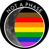 Not a Phase Pin - Philadelphia Pride Flag
