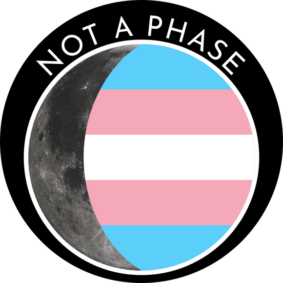 Not a Phase Pin - Transgender Pride Flag