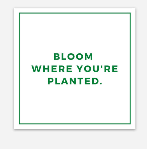 BLOOM STICKER