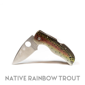 "Abel Native 5 Knife by Spyderco - ""Native Rainbow Trout"""