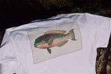 """Rainbowfish"" Classic Pocket Shirt"