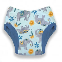Load image into Gallery viewer, Thirsties Potty Training Pant *click for options*