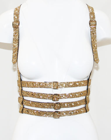 The Gold Glitter Harness