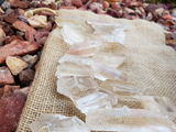 Golden Healer Quartz Points, Large